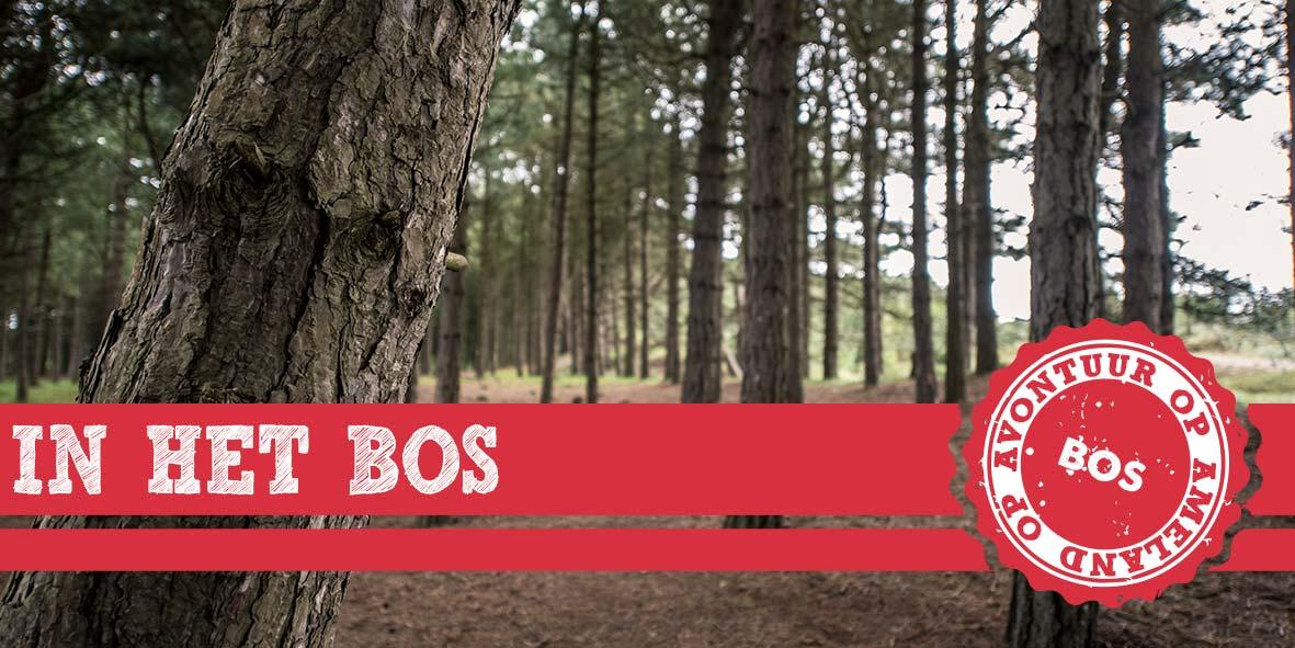 thema-3-het-bos