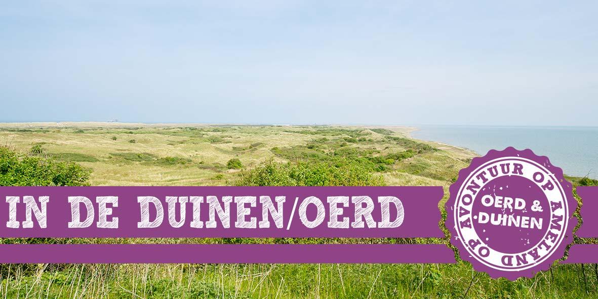 thema-9-oerd-duinen